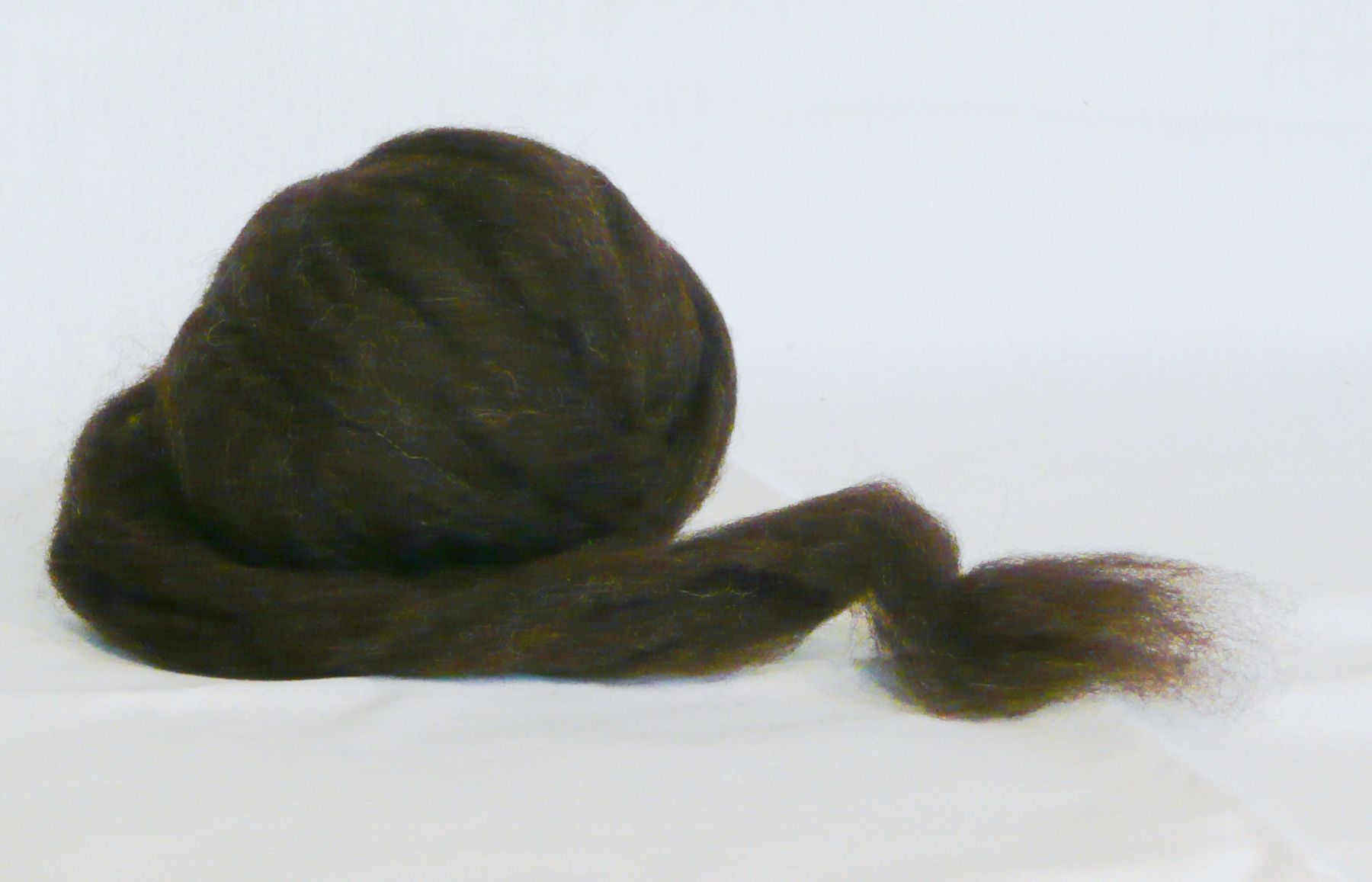 Natural brown sheep wool roving ready to be spun into yarn on a drop spindle.